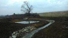Revitalizace potoka -od Sušky po Hanou